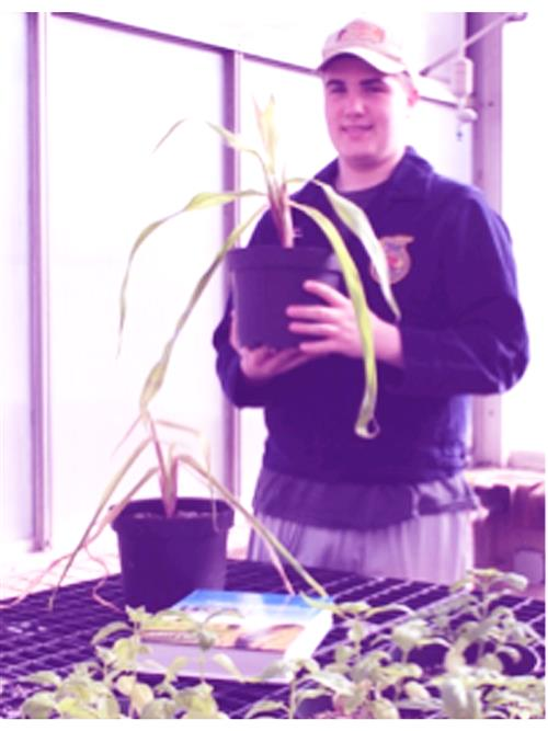 Student holding a potted plant